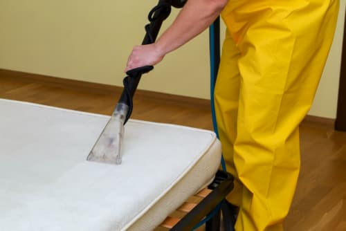 Getting Rid of Nasty Things In Your Mattress