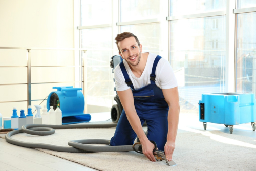 The Case for Deep Cleaning Your Carpet