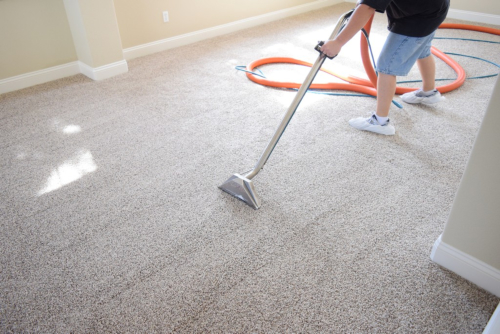 Choosing Your Professional Carpet Cleaners